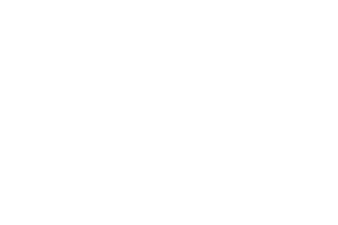 Born and Raised Realty
